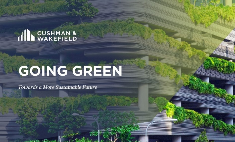 Going Green   Towards a More Sustainable Future