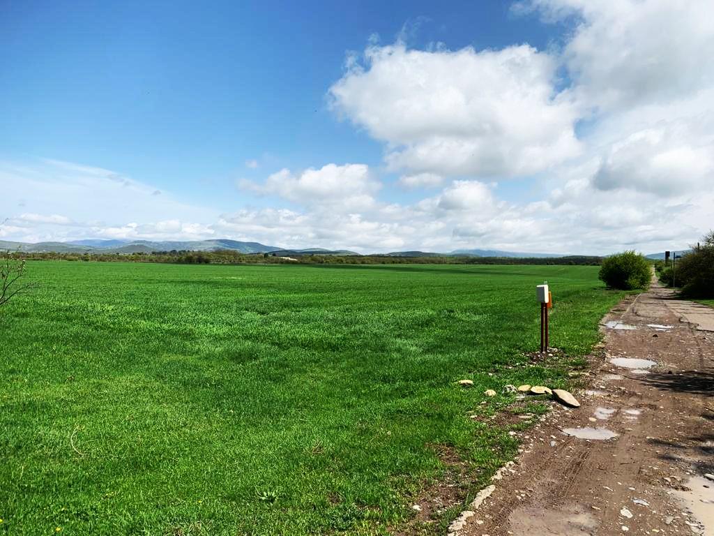 Land Near Bazaleti Lake